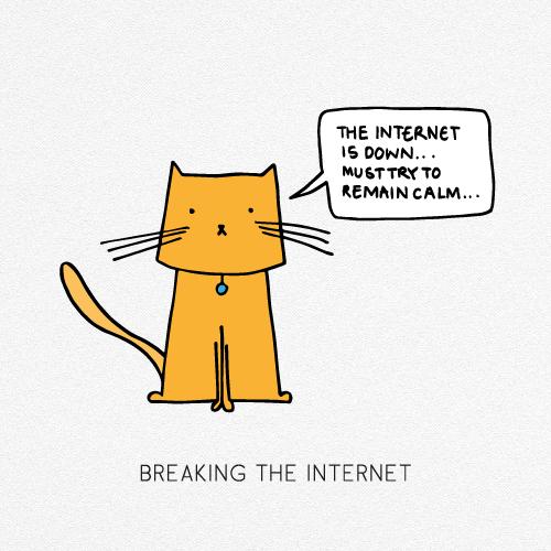 BREAKING THE INTERNET