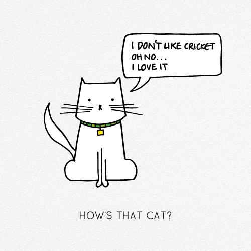 HOW'S THAT CAT?