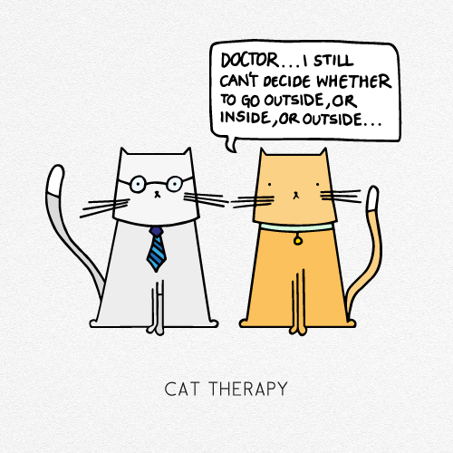 CAT THERAPY