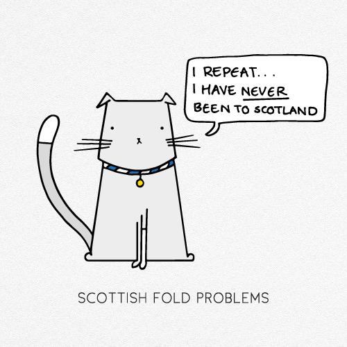 SCOTTISH FOLD PROBLEMS