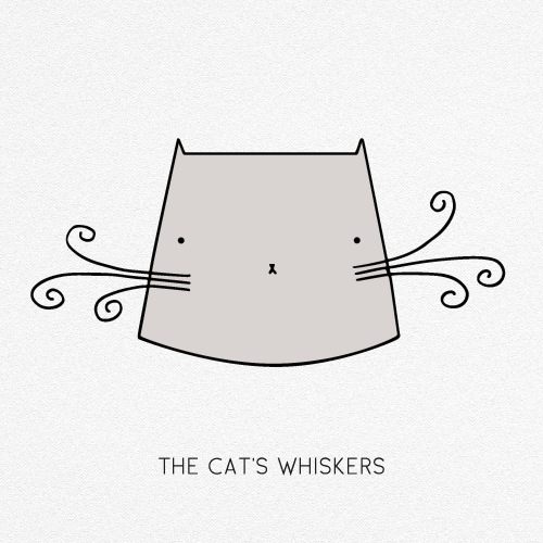 Image result for whiskers png