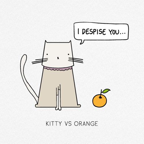KITTY VS ORANGE