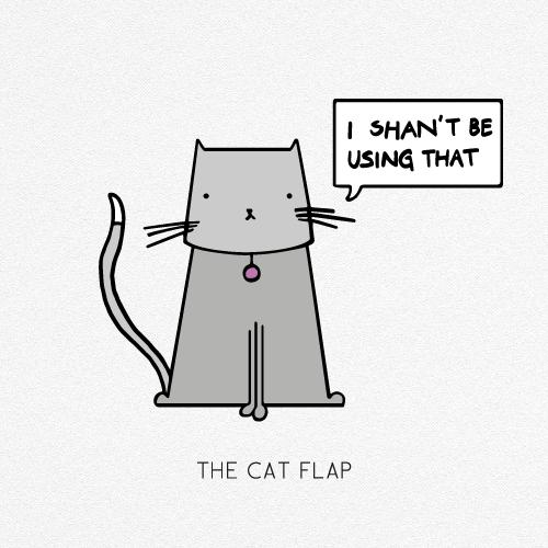 THE CAT FLAP