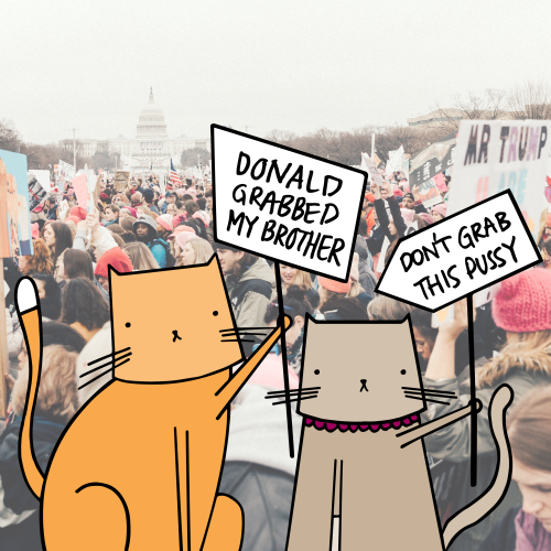 Witty Kitty Joins the People